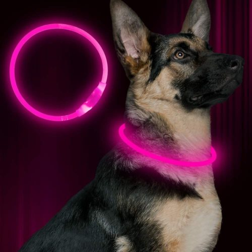 BSEEN LED Dog collar, USB rechargeable