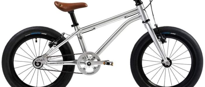 10 Best Strida Folding Bike Review2021- Do Not Buy Before Reading This